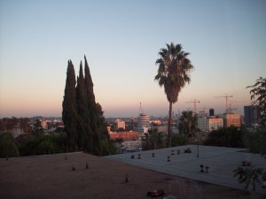 Skyline Views of Los Angeles from  Hollywood Hills Apt