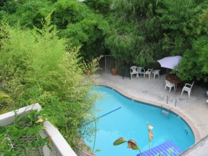 Swimming Pool - Hollywood Hills